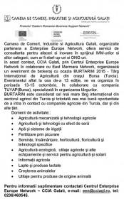 Microsoft Word - CCIA1.doc